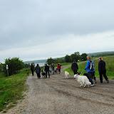 20130623 Erlebnisgruppe in Steinberger See (von Uwe Look) - DSC_3663.JPG