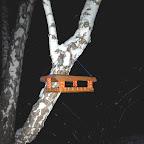 Кормушки для птичек 012.jpg