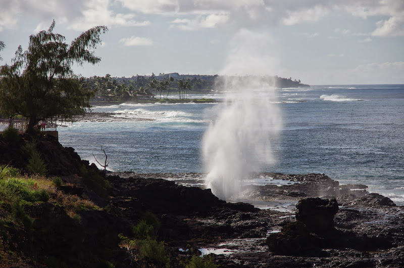 06-27-13 Spouting Horn & Kauai South Shore - IMGP9774.JPG