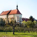 2015.04.23.,Klasztor wiosną,fot.H.L (36).jpg