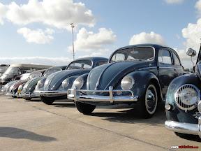 Volkswagen Beetles - MAlta