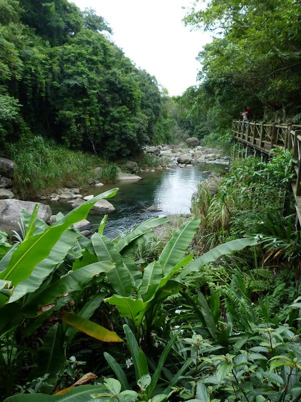 TAIWAN.Dans la région de Miaoli - P1080397.JPG
