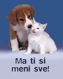 besplatne ljubavne slike free download životinje pas mačka