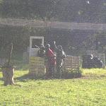 P9151149.JPG