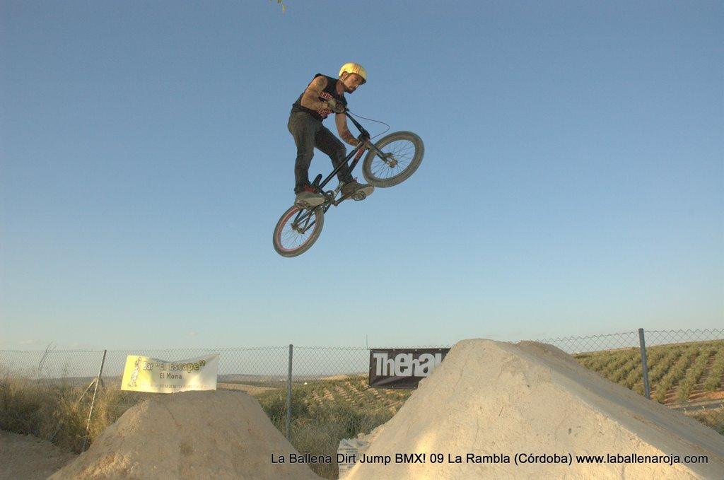 Ballena Dirt Jump BMX 2009 - BMX_09_0118.jpg