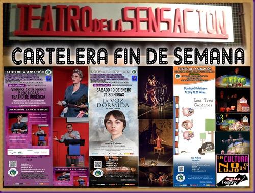 FIN DE SEMANA- 099-VOZ DORMIDA-3 CERDITOS