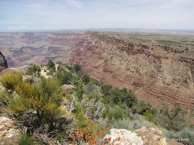 2010 - SX10_1100_Desert_View.JPG