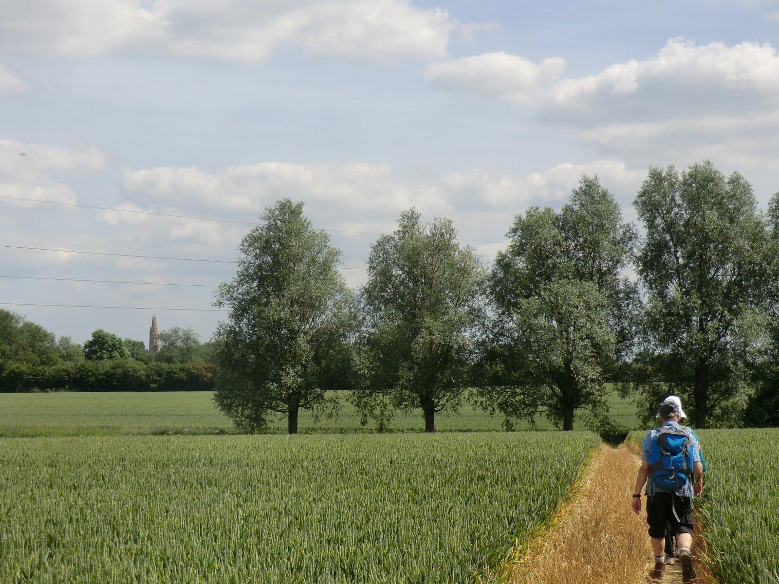 CIMG2000 Through a field towards Hadlow