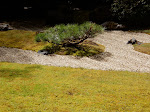A full-size zen garden