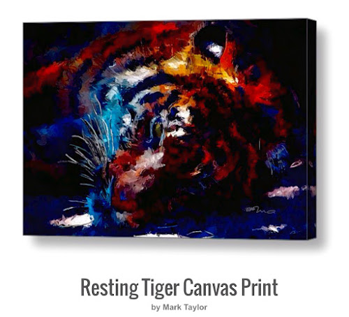 Resting Tiger by MA