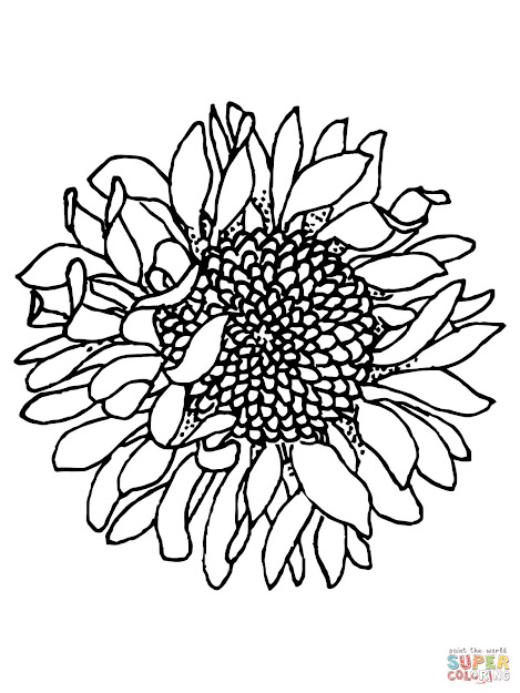 Click The Head Of Sunflower Coloring Pages To View Printable Version Or  Color It Online Patible With Ipad And Android Tablets