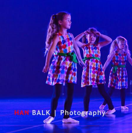 Han Balk Voorster Dansdag 2016-4407-2.jpg