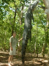 crocodile_hunting_4_large.jpg