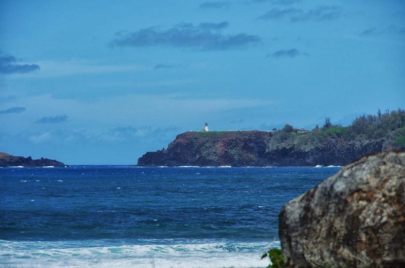 06-25-13 Annini Reef and Kauai North Shore - IMGP9339.JPG