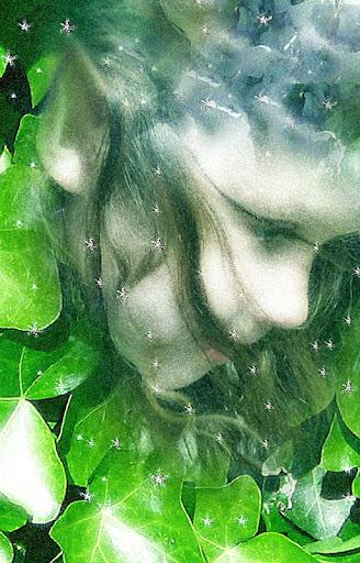 2007 Ivy Fairy