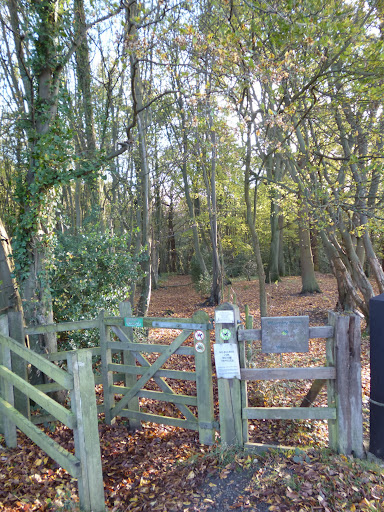Entrance to Wormley wood