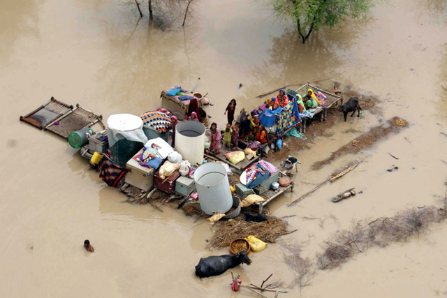 A family along with their cattle and possessions stranded atop small islands formed due to massive floods, Sindh province, Pakistan. Photo: Nadeem Khawer / IFAD / EPA