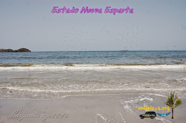 Playa Venetur (Hilton) NE014, estado Nueva Esparta, Margarita
