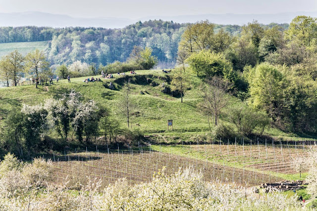 Naturdenkmal Hagschutz