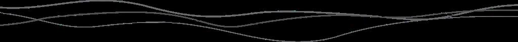 [divider+gray+lines%5B6%5D]