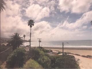 Strand med vegetasjon og palmer i forgrunnen. skyer på himmelen.