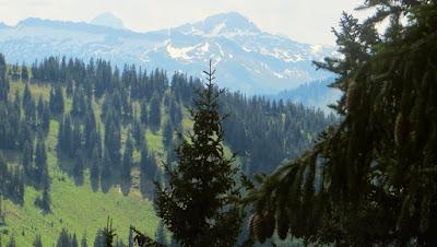 Blick zu den Bergen Vorarlbergs von der Nagelfluhkette