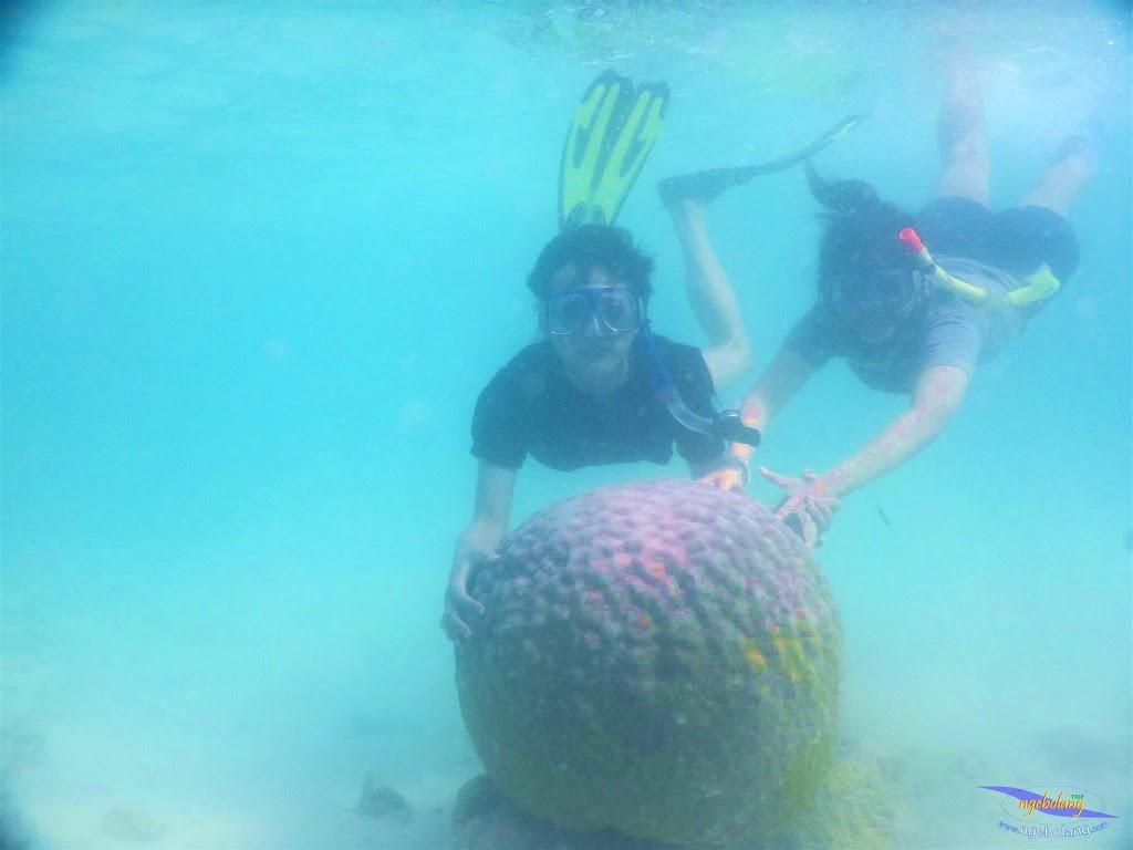 pulau pari, 23-24 mei 2015 39
