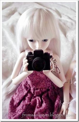 Bjd holding a camera