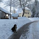 Zima-winter - IMG_4055.jpg