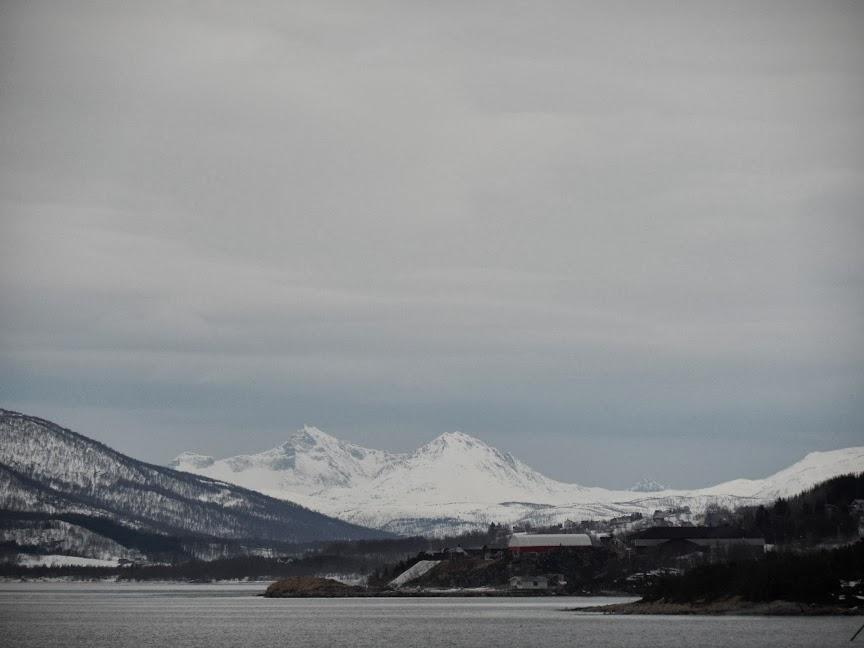 Norvège mars 2014 SAM_1452