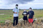 Pemuda Tani HKTI Jawa Tengah Bagikan Masker Untuk Petani dan Pedagang