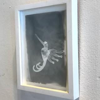 Wendy Small 'Hummingbird' Photogram