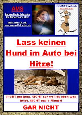 Lass keinen Hund im Auto bei Hitze