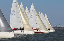 J/80 one-design sailboat- sailing JFest Houston, Tx