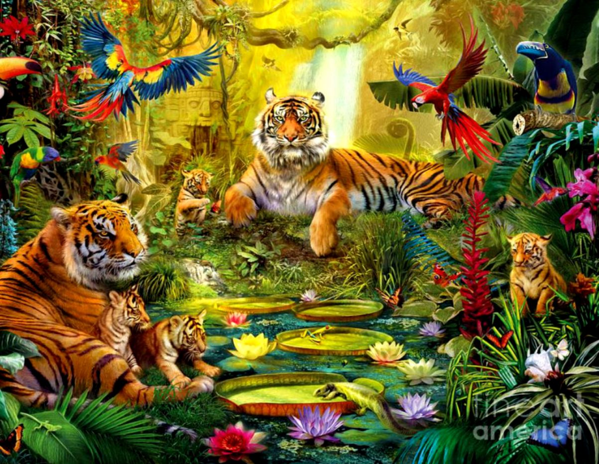 jungle animals real life wallpapers hd hd wallpapers gallery