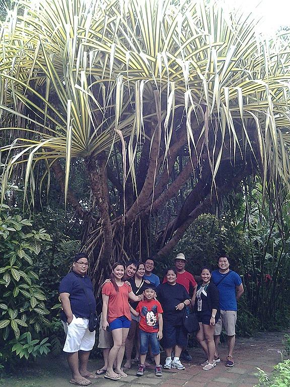Butterfly Garden, Bohol