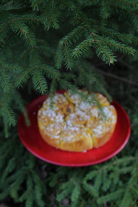 Suddig bild på butterkaka på rött tårtfat med fokus på barriga grenar