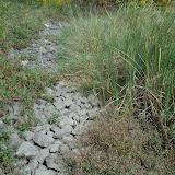Третий проток, тоже сухой сейчас, вода появляется весной и после дождей.