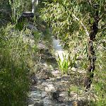following the Bullawarring track (36777)