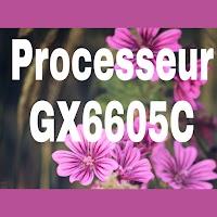 Types de tous les appareils qui portent le processeur GX6605C
