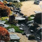 Picasa Japangarten