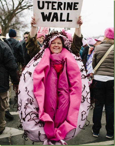 womens march d.c. lady parts