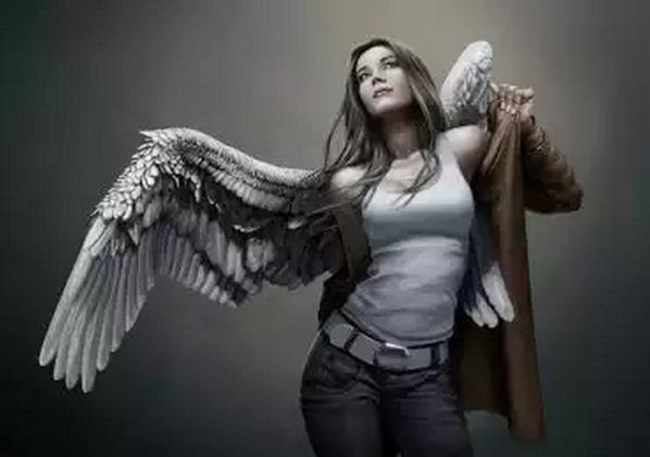 anjos na terra 01