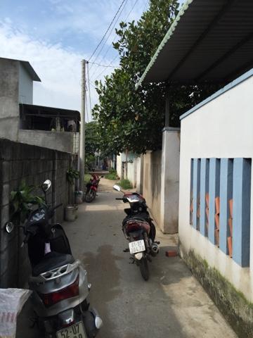 Bán nhà cấp 4 và 5 phòng trọ Phường Đông Hoà , Dĩ An , Bình Dương