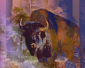 """The """"Bison"""" piece from the """"2002"""" collection"""