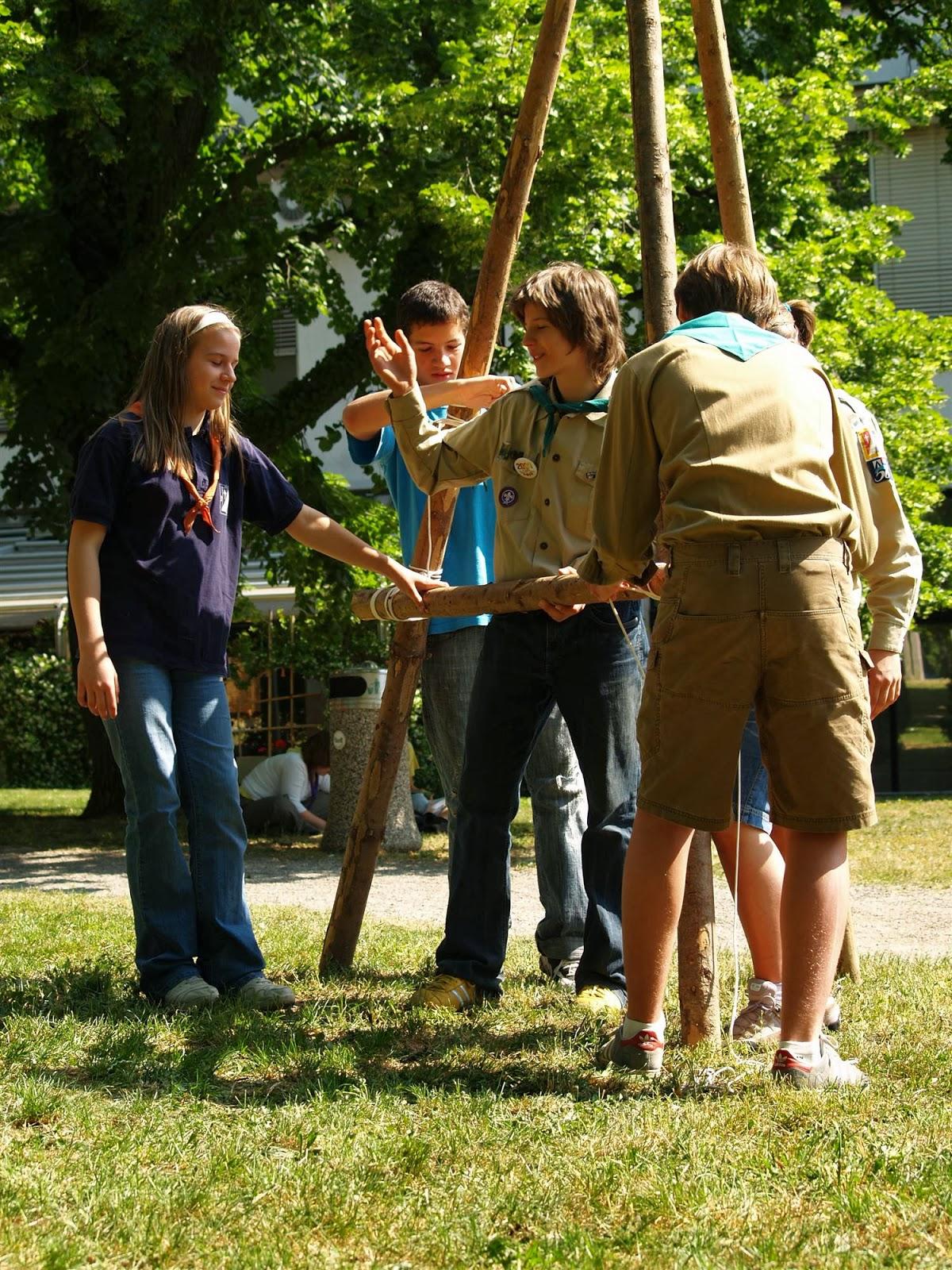 Področni mnogoboj, Sežana 2007 - P0207110.JPG
