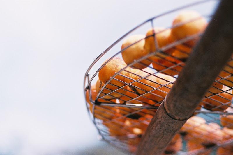 底片這一味--味衛佳柿餅