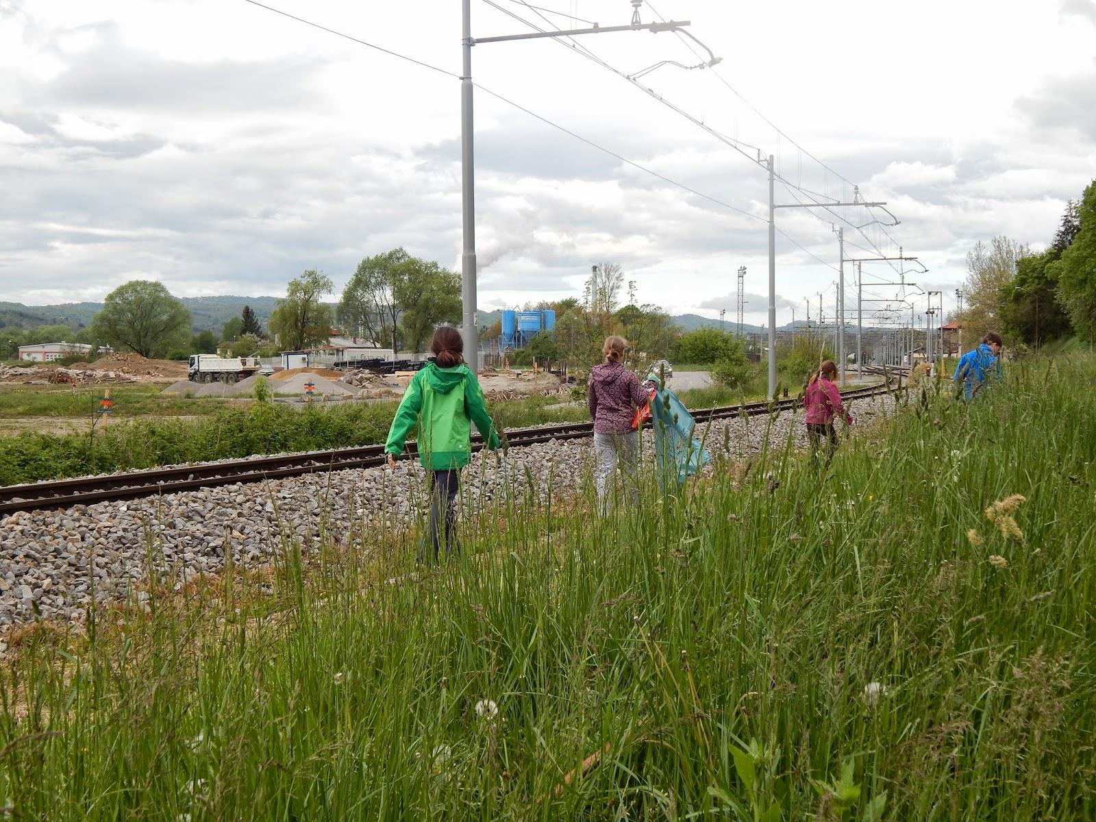 Čistilna akcija 2014, Ilirska Bistrica 2014 - DSCN1637.JPG