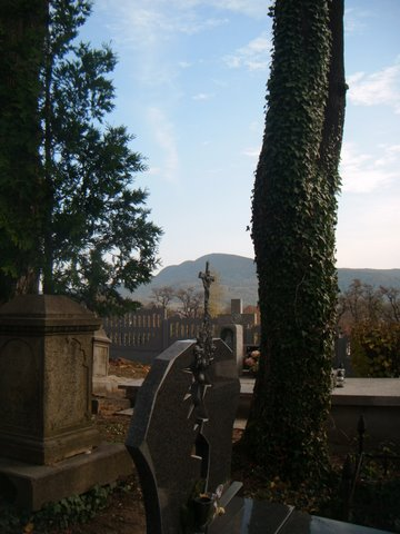 Przed Świętem Zmarłych - DSCF6086.JPG
