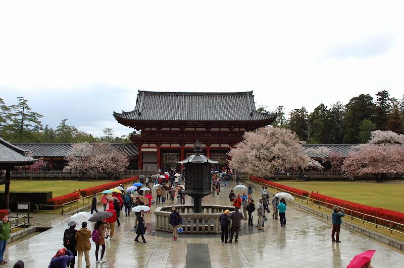 2014 Japan - Dag 8 - jordi-DSC_0526.JPG